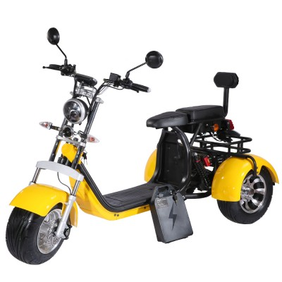 Electric Scooter 3 wheel - ST-04 Scooters Electric EEC