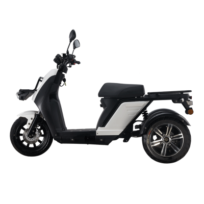 Electric scooter tricycle Delivery-Cargo Fleet Scooters