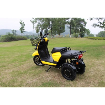 Electric tricycle (3wheeler) Delivery-Cargo - Storm Fleet Scooters