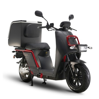 Electric Delivery & Cargo Scooter - E10 Fleet Scooters