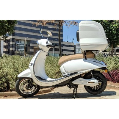 Electric Scooter - Pusa Delivery